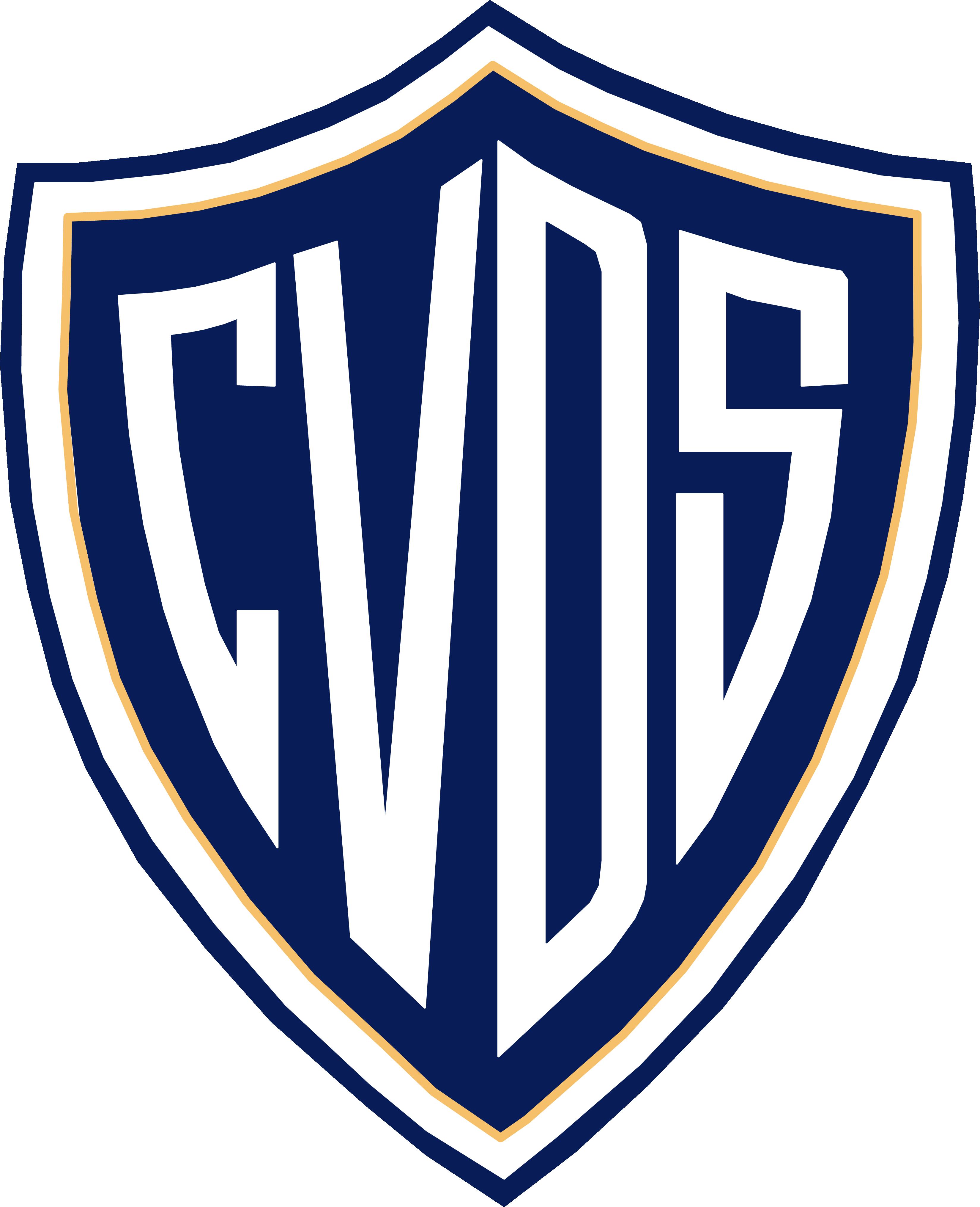 Colegio Víctor Domingo Silva